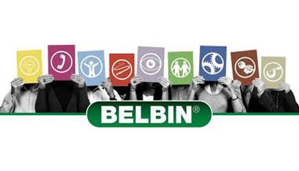 Certification «Méthode des Rôles en Equipe » BELBIN