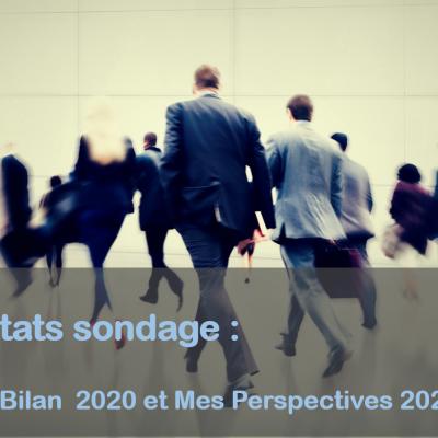 Résultats du sondage : Quel bilan 2020 et perspectives 2021 ?